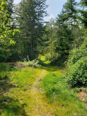 0-Lot Xxx Rd, Silverdale, WA 98383 (#1454634) :: The Kendra Todd Group at Keller Williams