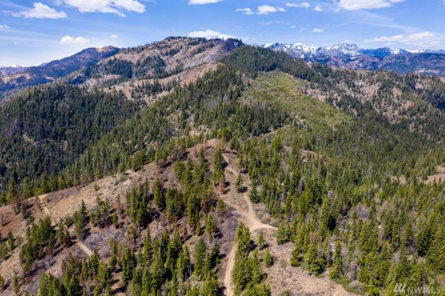 0 Old Blewett Pass Rd, Cle Elum, WA 98922 (#1454869) :: Real Estate Solutions Group