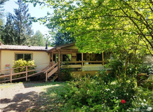224 Mountain View Dr, Packwood, WA 98361 (#1455063) :: Costello Team
