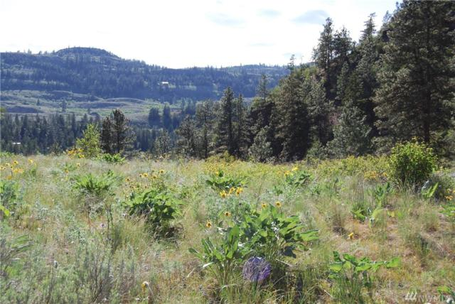0-Lot 4 Wannacut Lake Road, Tonasket, WA 98855 (#1455064) :: Real Estate Solutions Group