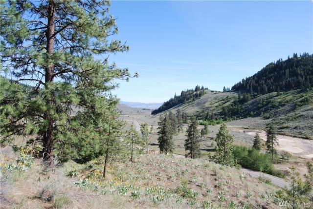 10-Lot 3 Wannacut Lake Road, Tonasket, WA 98855 (#1455065) :: Real Estate Solutions Group
