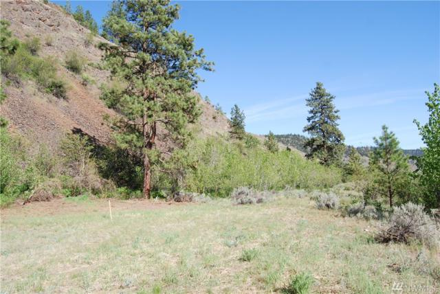 9-Lot 2 Wannacut Lake Road, Tonasket, WA 98855 (#1455066) :: Real Estate Solutions Group