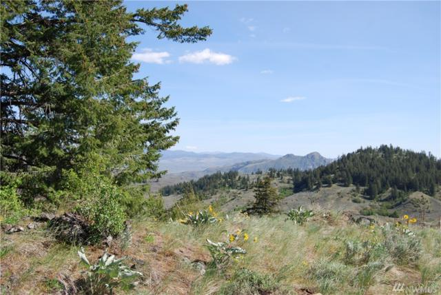 43-Lot 12 Wannacut Lake Road, Tonasket, WA 98855 (#1455068) :: Real Estate Solutions Group