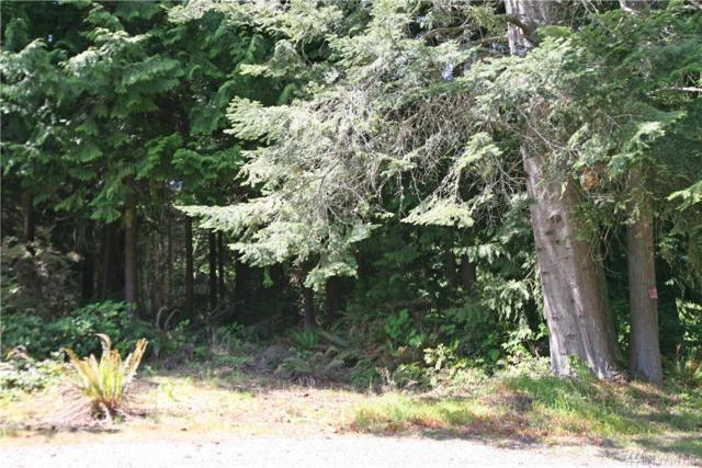 5925 NE Spruce Dr, Hansville, WA 98340 (#1455116) :: Better Homes and Gardens Real Estate McKenzie Group
