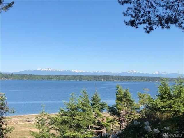 216 Herron Lane NW, Lakebay, WA 98349 (#1455260) :: Kimberly Gartland Group