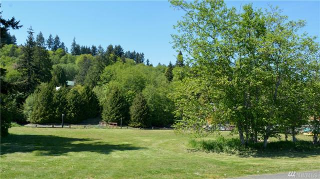 9999 N Beach Dr, Port Ludlow, WA 98365 (#1455490) :: Homes on the Sound
