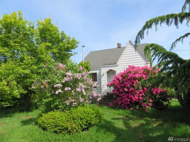 17171 Mclean Rd, Mount Vernon, WA 98273 (#1455494) :: McAuley Homes