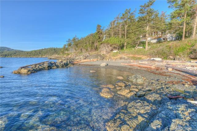 206 Lohman Lane, Orcas Island, WA 98245 (#1455544) :: Ben Kinney Real Estate Team