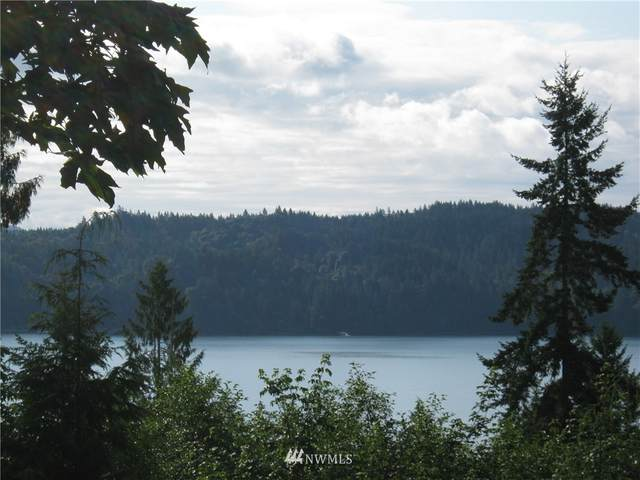 0 661 N Seagull Way, Lilliwaup, WA 98555 (#1456025) :: Northwest Home Team Realty, LLC