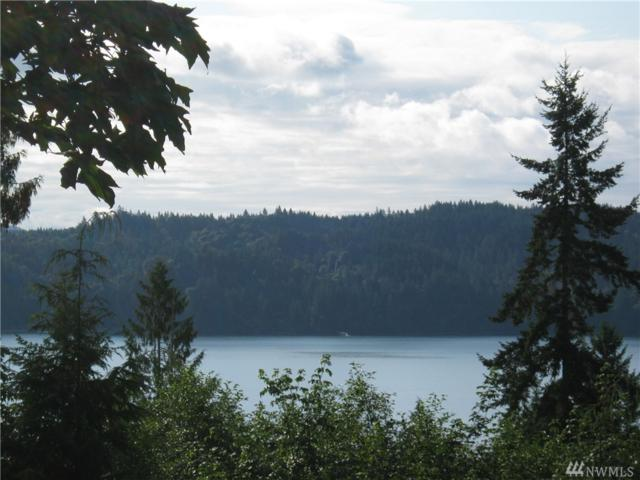 0-Lot 1 722 Seagull Wy, Lilliwaup, WA 98555 (#1456025) :: Crutcher Dennis - My Puget Sound Homes