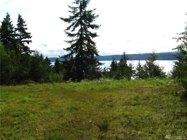 0 Lot 3  Seagull Wy, Lilliwaup, WA 98555 (#1456076) :: Crutcher Dennis - My Puget Sound Homes