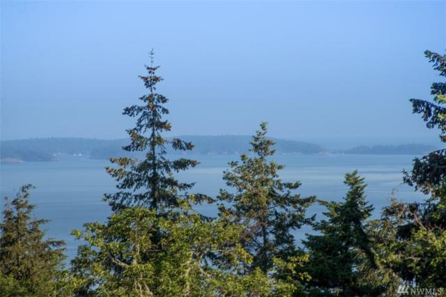 23 Tsuga Lane, Orcas Island, WA 98245 (#1456108) :: NextHome South Sound