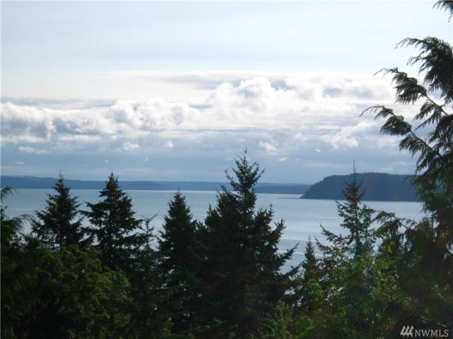 0-Lot 2 Seagull Wy, Lilliwaup, WA 98555 (#1456117) :: Crutcher Dennis - My Puget Sound Homes