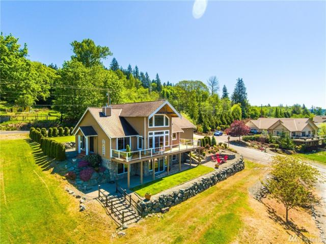 18732 Sulfer Springs Rd, Mount Vernon, WA 98274 (#1456157) :: Keller Williams Western Realty
