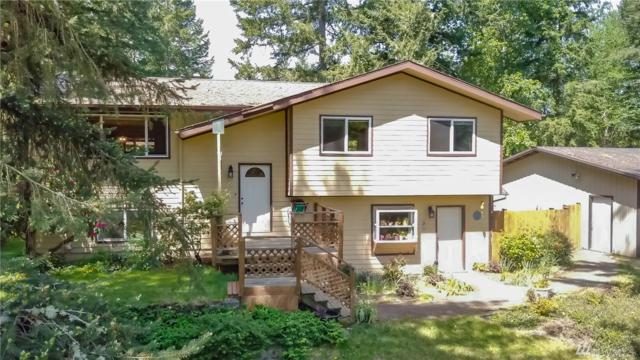 33614 66th Ave S, Roy, WA 98580 (#1456210) :: Real Estate Solutions Group