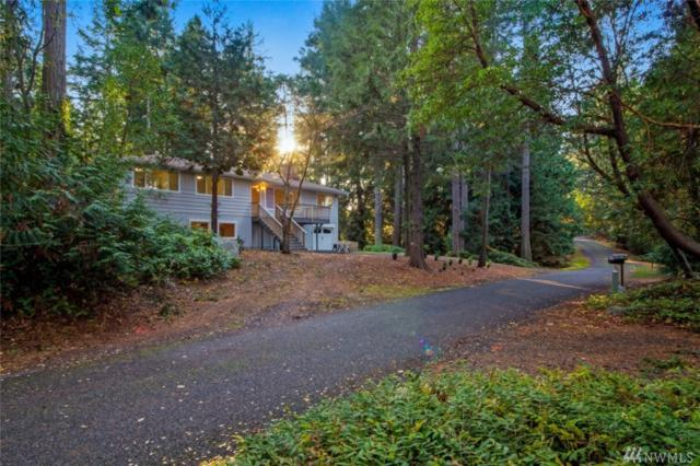 228 Brooks Lane, San Juan Island, WA 98250 (#1456709) :: Real Estate Solutions Group