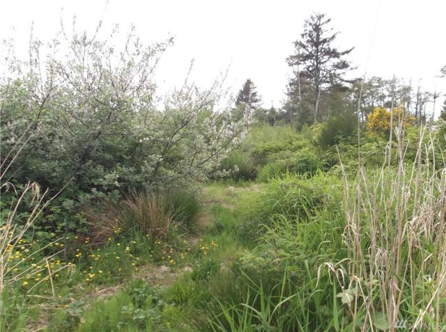 0-XXX Cranberry Rd, Grayland, WA 98547 (#1456999) :: Homes on the Sound