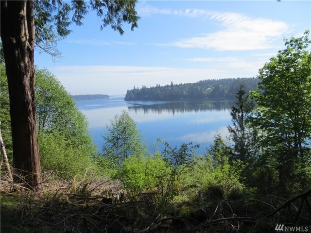 0 Strong Rd, Shelton, WA 98584 (#1457025) :: Homes on the Sound