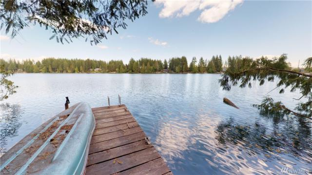 1070 E Benson Lake Dr, Grapeview, WA 98546 (#1457238) :: Kimberly Gartland Group