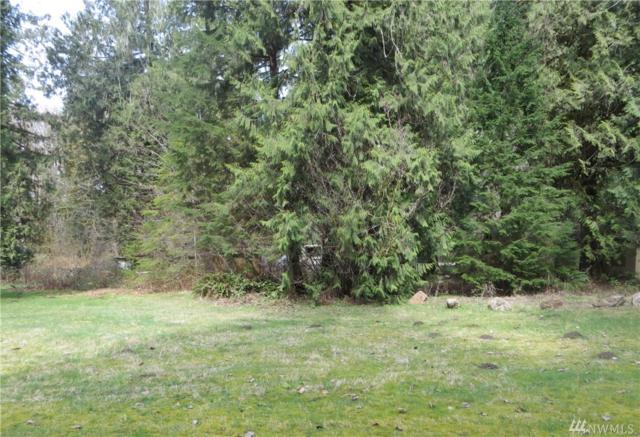 54165 Steelhead Landing, Concrete, WA 98237 (#1457301) :: Homes on the Sound