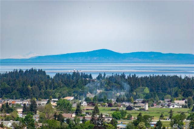 20 Amethyst Dr, Sequim, WA 98382 (#1457565) :: Homes on the Sound