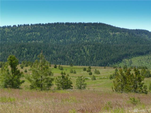 845-(Lot 6) Leo Lane, Cle Elum, WA 98922 (#1458225) :: Kimberly Gartland Group