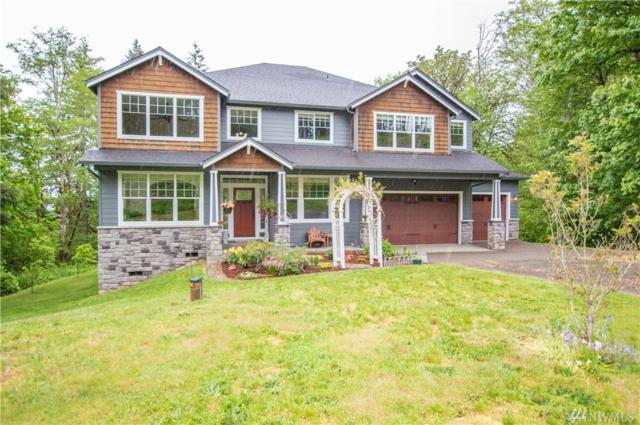 3211 Green Mountain Rd, Kalama, WA 98625 (#1458291) :: Ben Kinney Real Estate Team