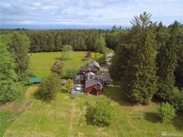 171 Whiskey Creek Beach Rd, Port Angeles, WA 98363 (#1458581) :: Homes on the Sound