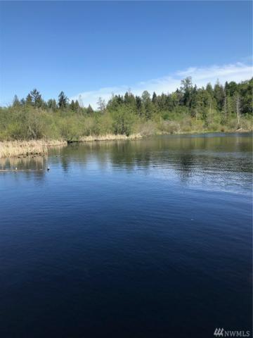 173 E Lake Desire Dr SE, Renton, WA 98058 (#1458751) :: Ben Kinney Real Estate Team