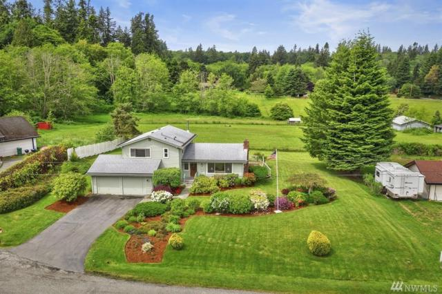 23881 Newell Lane NE, Kingston, WA 98346 (#1458983) :: Ben Kinney Real Estate Team