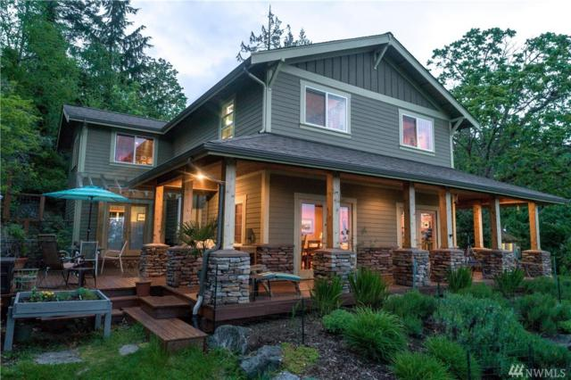 3810 Toad Lake Rd, Bellingham, WA 98226 (#1458999) :: The Royston Team