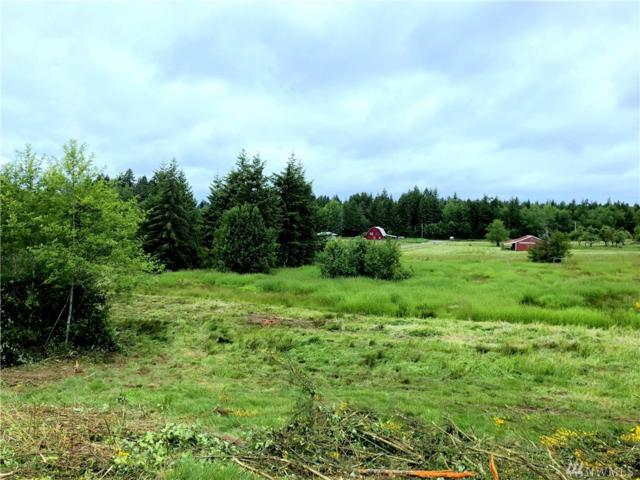 4030 150th Ave SW, Tenino, WA 98589 (#1459061) :: Real Estate Solutions Group