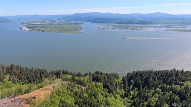 0 State Route 4, Skamokawa, WA 98647 (#1459189) :: Ben Kinney Real Estate Team
