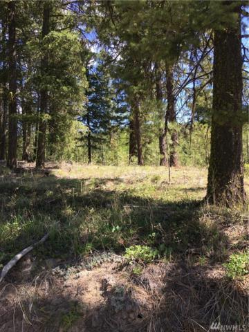 0 Tbd Salmon Falls Rd, Conconully, WA 98819 (MLS #1459246) :: Nick McLean Real Estate Group