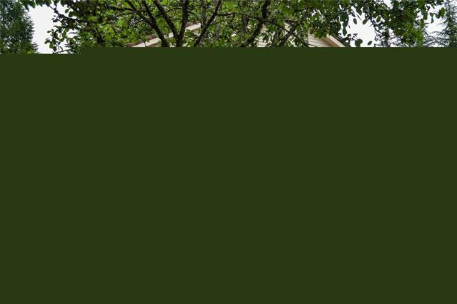 1240 140th Place NE, Bellevue, WA 98007 (#1459285) :: Tribeca NW Real Estate