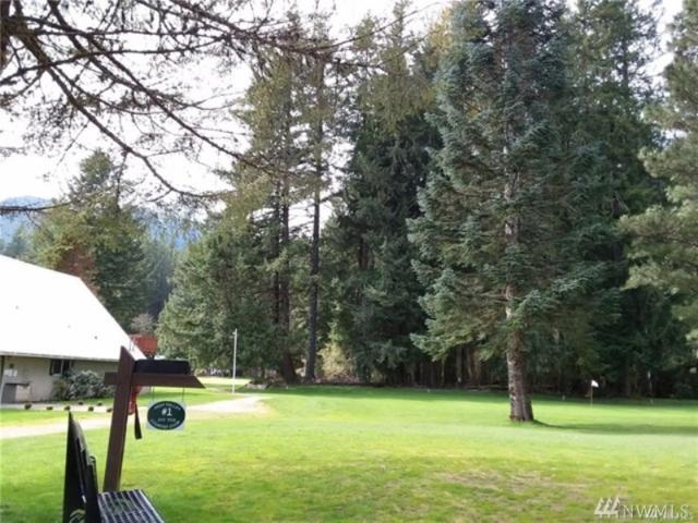 0 Mary Lane, Packwood, WA 98361 (#1459359) :: Kimberly Gartland Group