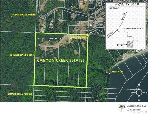 200 E Cottonwood Dr, Shelton, WA 98584 (#1459413) :: Kimberly Gartland Group