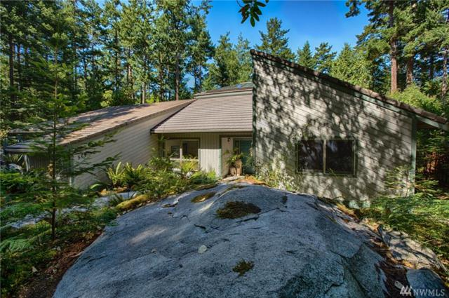 569 Island Dr, Friday Harbor, WA 98250 (#1459463) :: Ben Kinney Real Estate Team
