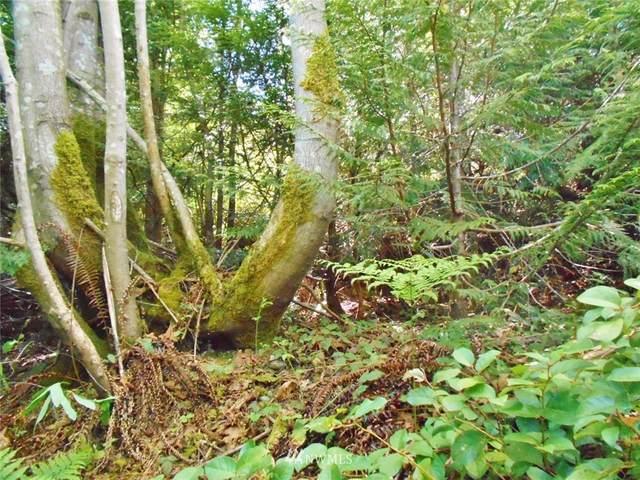 0 Forest Drive, Brinnon, WA 98320 (#1459540) :: Pickett Street Properties