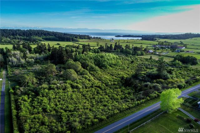 0-xxx Bailer Hill Rd, San Juan Island, WA 98250 (#1459562) :: Homes on the Sound