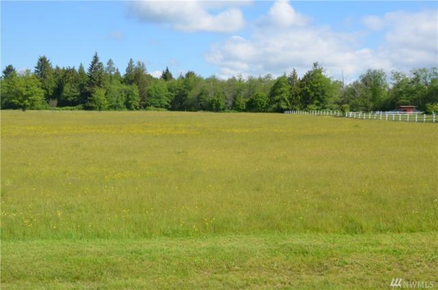 0 324th (Lot F) St NW, Stanwood, WA 98292 (#1459627) :: The Royston Team