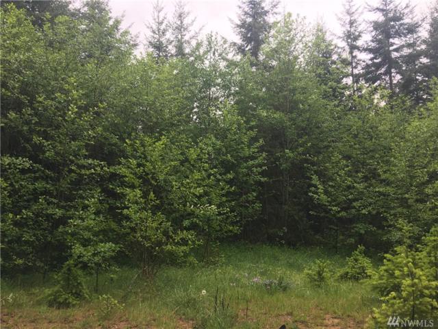 0 Xxx Bearclaw Lane, Chehalis, WA 98532 (#1459873) :: Homes on the Sound