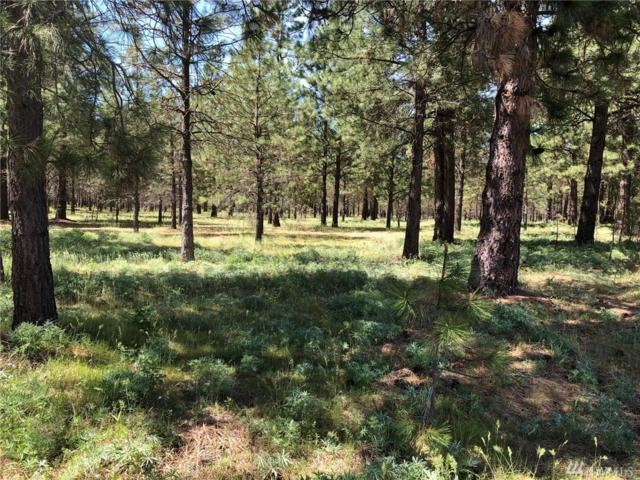 3581 Hwy 970 (Lot 1), Cle Elum, WA 98922 (#1459956) :: Kimberly Gartland Group