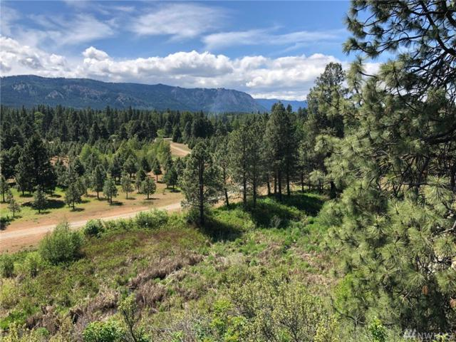 3581 Hwy 970 (Lot 2), Cle Elum, WA 98922 (#1459958) :: Kimberly Gartland Group