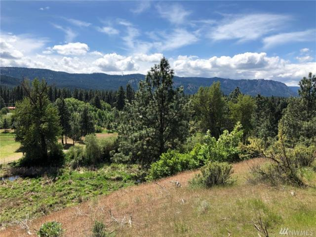 3581 Hwy 970 (Lot 3), Cle Elum, WA 98922 (#1459959) :: Kimberly Gartland Group
