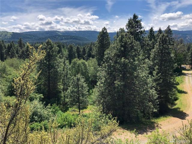 3581 Hwy 970 (Lot 4), Cle Elum, WA 98922 (#1459960) :: Kimberly Gartland Group