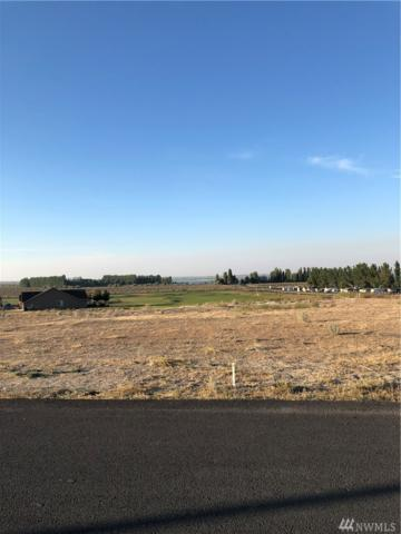 6549 SE Hwy 262   Lot 31, Othello, WA 99344 (#1459985) :: The Deol Group