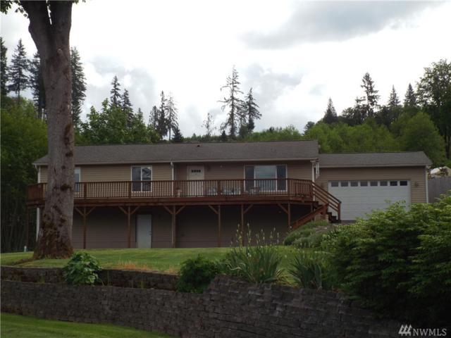 203 Lakeview Dr, Mossyrock, WA 98564 (#1460033) :: Kimberly Gartland Group