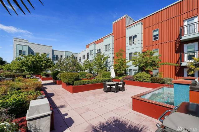 424 N 85th St #317, Seattle, WA 98103 (#1460069) :: Homes on the Sound
