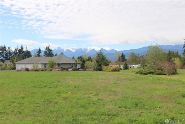 0 Pheasant Run Dr, Sequim, WA 98382 (#1460070) :: Kimberly Gartland Group
